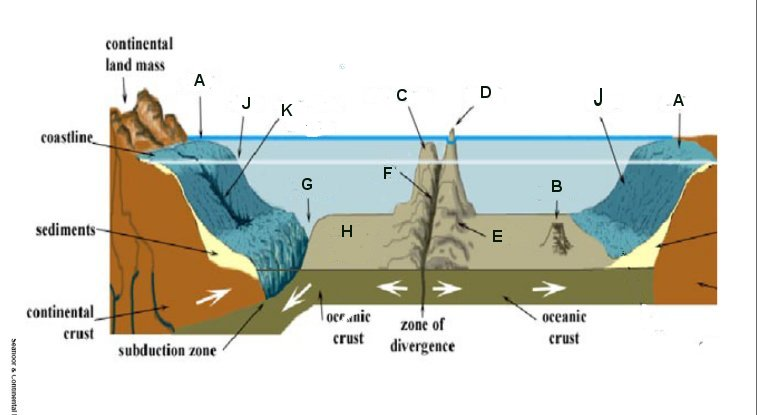 Ocean       Floor       Diagram    To Label